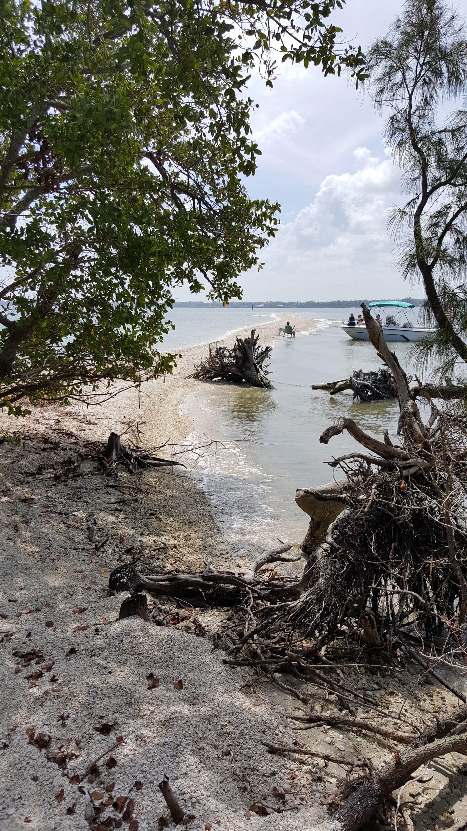 WanderWise Travel Album Caribbean vacation beach